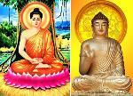 Phật Thích Ca và Phật A Di Đà có phải là một?